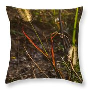 Glowing Foxtails Throw Pillow