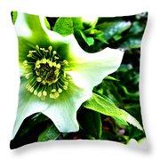 Glowing Green Throw Pillow