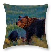 Glowing Grizzly Bear Throw Pillow