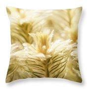 Glowing In Sunlight Golden Plants Throw Pillow