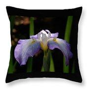 Glowing Iris Throw Pillow