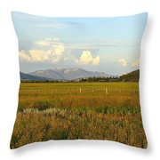 Glowing Meadow Throw Pillow