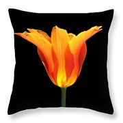 Glowing Orange Tulip Flower Throw Pillow
