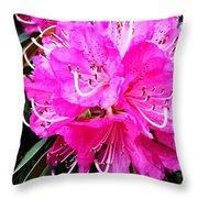 Glowing Pink Throw Pillow