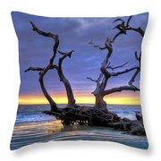 Glowing Sands At Driftwood Beach Throw Pillow