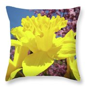 Glowing Yellow Daffodils Art Prints Pink Blossoms Spring Baslee Troutman Throw Pillow