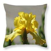 Glowing Yellow Iris Throw Pillow