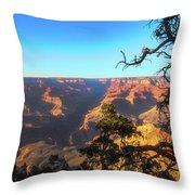 Gnarled Juniper On Canyon Rim Throw Pillow