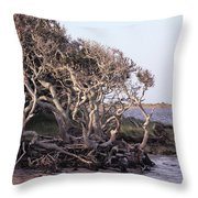Gnarled Oak Trees Throw Pillow