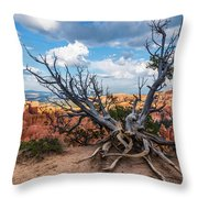 Gnarly - Bryce Canyon Throw Pillow
