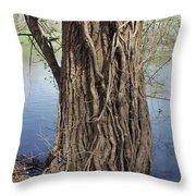 Gnarly Tree 2 Throw Pillow