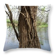 Gnarly Tree 3 Throw Pillow
