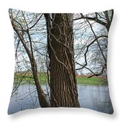 Gnarly Tree 4 Throw Pillow