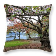 Gnarly Trees Of South Hilo Bay - Hawaii Throw Pillow