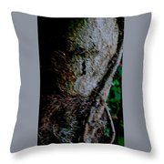 Gnome In The Genome  Throw Pillow