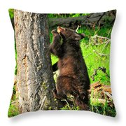 Go Climb A Tree Throw Pillow