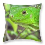 Go Iguana Green 2 Throw Pillow