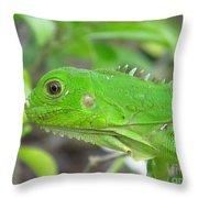 Go Iguana Green Throw Pillow