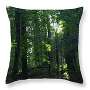 Go Into Your Dream Throw Pillow