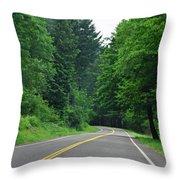 Go Where It Takes Us Throw Pillow