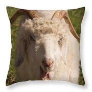 Goat Eating Throw Pillow