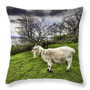 Goat Enjoying The View Throw Pillow