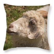 Goat Looking Up. Throw Pillow