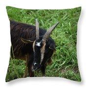Goat With Long Horns In A Grass Field Throw Pillow