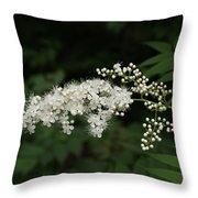 Goat's Beard Bush White Bloom Throw Pillow