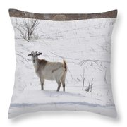 Goats In Snow Throw Pillow