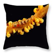Goby Throw Pillow