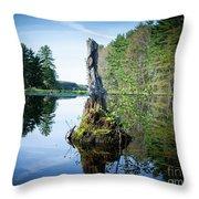God's Beauty - Nature's Bouquet 16 Throw Pillow