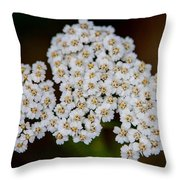 Gods Bridal Bouquet Throw Pillow