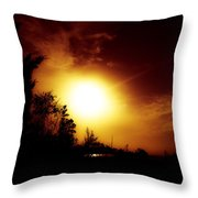God's Creations.. Throw Pillow