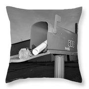 God's Mailbox Throw Pillow