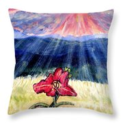 God's Ray's Shining On A Red Lily Flower In The Spring Throw Pillow