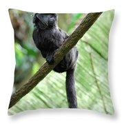 Goeldi Marmoset Perched On A Vine Throw Pillow