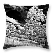 Goin' Down The Road 2 Throw Pillow