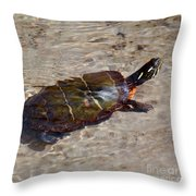 Going For A Dip Throw Pillow