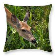 Going For The Leaf Throw Pillow