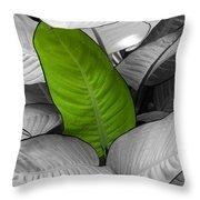 Going Green Throw Pillow