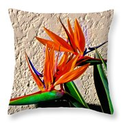 Going In Different Directions Throw Pillow