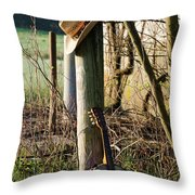 Going To The Country Throw Pillow