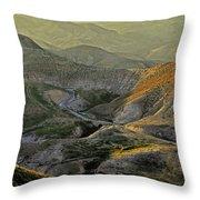 Going Up To Jerusalem Throw Pillow