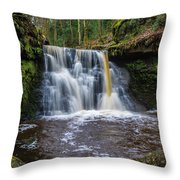 Goit Stock Waterfall Throw Pillow