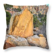 Gold Boulder Throw Pillow