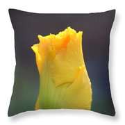 Gold Bud Throw Pillow
