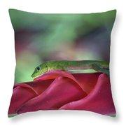 Gold Dust Day Gecko 1 Throw Pillow