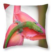 Gold Dust Day Gecko 2 Throw Pillow