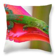 Gold Dust Day Gecko 3 Throw Pillow